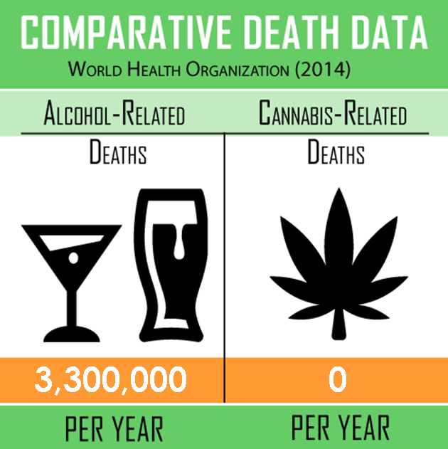 Marijuana-Related-Deaths