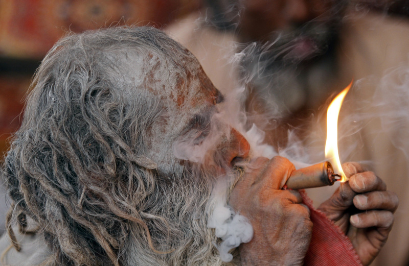 Marijuana Legal In India?